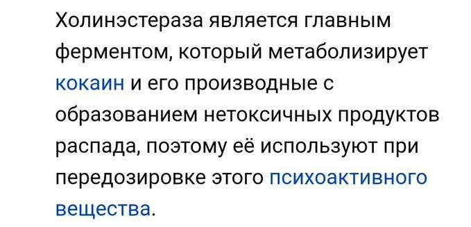 `Интересно, что в текущих проблемах со здоровьем Алексея Навального никто пока не увидел возможное следствие его прежних болячек.