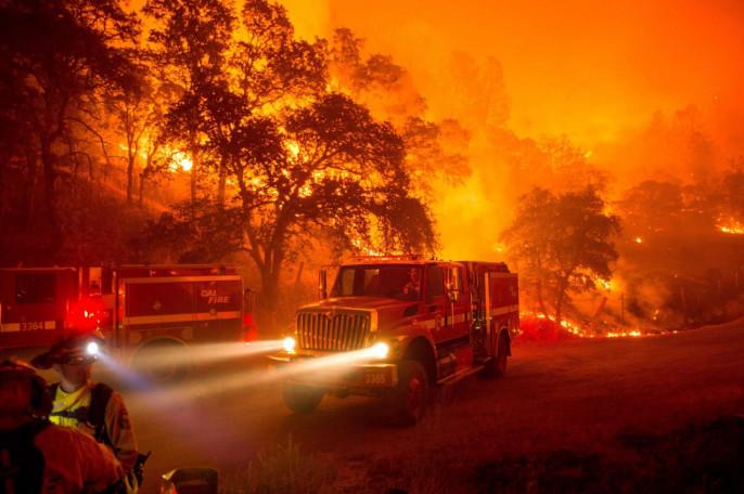 Сицилийские пожарные сами поджигали лес ради 10евро вчас