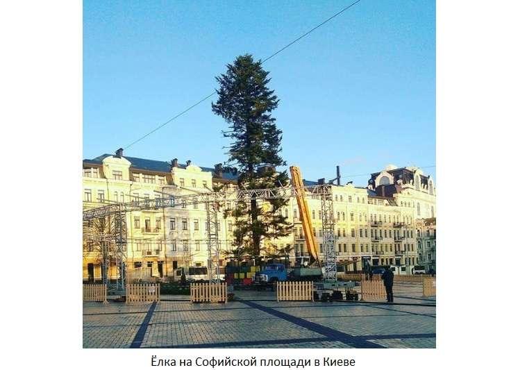 Миасских Дедов Морозов приглашают принять участие ввеселом параде